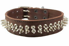 "Real Leather Dog Collar 18""-22"" neck Spikes 1.75"" wide Bullterrier  Puitbull"