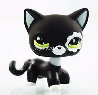 Rare Black Cat  #2249 Green Eyes Flower Patch Hasbro Littlest Pet Shop LPS Toys