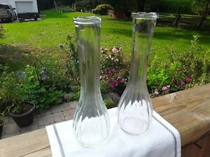Clear Glass Flower Vases. 2 Pcs. Gardening. Floral Display. Table Decorating
