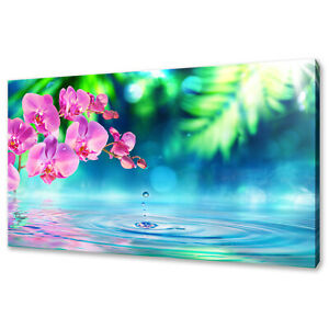 BEAUTIFUL PINK ORCHID FLOWERS IN ZEN GARDEN CANVAS PRINT WALL ART PICTURE