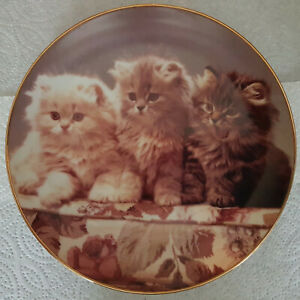 """""""All For Fun And Fun For All"""" Danbury Mint Collector Plate- Charity Sale"""
