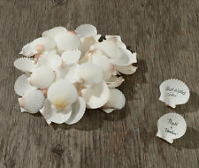 Natural Signing Shells Seashell Wedding Favors Guest Book Alternative
