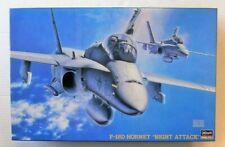 Hasegawa 1/48 F-18D Night Attack Hornet