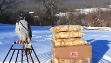 Falconry Food, Frozen Day-Old chicks for feeding raptors, box of 4 bags