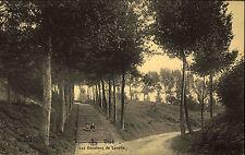 Visé wallonie Belgique s/w ~ 1910 les escaliers de Lorette waldpartie escalier