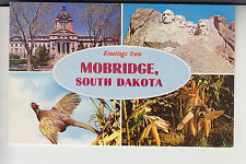 Chrome 4 View Greetings from Mobridge South Dakota
