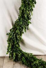 "Richland Natural Preserved Boxwood Garland 45"" Event Home Decor Floral Wedding"