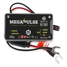 Megapulse Battery Protection, Restoration & Life Extension