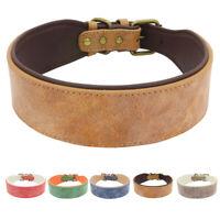 Leder Hundehalsband Hunde Halsband Breit Gepolstert  für Rottweiler Labrador XL