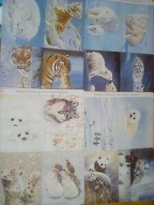 pollyanna pickering Snow and Ice 16 sheets of toppers