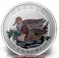 CANADA 25¢ - THE PINTAIL DUCK  COLOURED COIN - 2014