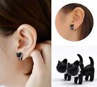 Womens 1PC Korean Style Black Cute Alloy Pearl Leopard Cat Stud Earrings Hot