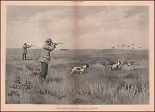 Prairie Chicken Hunting, Shooting, Pointer, Setter Dogs by A B Frost, 1894