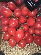Pomodorino del Piennolo kg.1,5