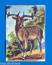 ANIMALI - Lampo 1964 - Figurina-Sticker n. 143 - DAINO -New