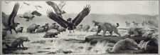 Book Plate: 1930 Panoramic Museum Mural La Brea Tar Pits By Charles R Knight