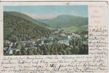 AK Polen Schlesien Bad Reinerz Duszniki-Zdrój Litho 1904