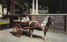 VT Wilmont THE CRAFTS INN Pinto Pony pulling WICKER CART Horse postcard A91