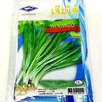 Chia Tai Thai Vegetable Parsley Seeds Culantro Coriander plant Herb For Food