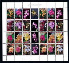 [SUV1326] Surinam Suriname 2005 Flowers Orchids Miniature Sheet with tab MNH