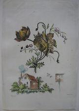 Pfingstrosen kolor Orig Kupferstich in Crayonmanier Auvray nach Naudet 1790