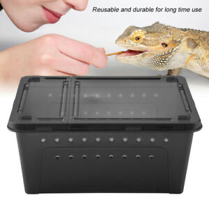 Durable Plastic Ventilated Feeding Container for Lizard Spider Scorpion Black