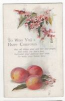 Happy Christmas Blossoms Plums C7515 Tuck Oilette 1922 Greetings Postcard US120