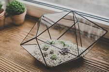 Terrarium Large Strange shape Stained Glass terrarium Geometric Scandinavian