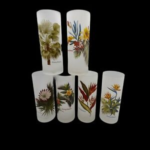 Vtg Set of 6 Frosted Tropical Floral High Ball Tommy Bahama Glasses