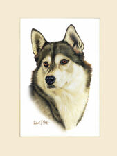Original Siberian Husky Painting by Robert J. May