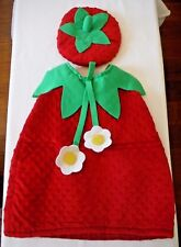 Size 18 - 24 Mos. Princess Paradise Strawberry Halloween Costume, Outfit & Beret