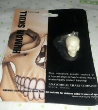 Anatomical Chart Co. - Human Skull Keyring