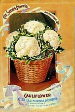 Cox's Cauliflower Vintage Vegetables Seed Packet Catalogue Advertisement Poster