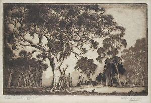 ERNEST WARNER (1879-1968) RARE Original etching Australian Outback 1920