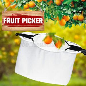 Frutta Raccoglitore Ricevitore Alta Albero Picking Raccolta Attrezzo Gardenin