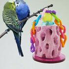 New Colorful Hanging Chew Stone Bite Toy Swing Teeth Grinding Pet Bird Parrot
