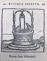 Rare Grenouille 1682 Gravure Herpétologie Puits Fables Esope Gabriele Faerno