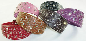 New Diamante Stud and Stich Design Leather Collar For Whippet Greyhound Lurcher