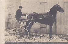 A6348) BOLOGNA, CORSE AL TROTTO 1902, IL CAVALLO ARLECCHINO DI VAN TASSEL E LOLA