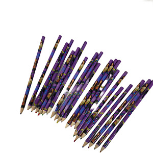 Disney- 21 Piece SELENA GOMEZ Wizards Rule Of Waverly Place Loose Colour Pencils