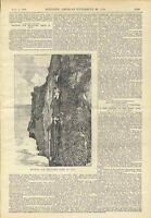 1898 Java Swallows Salangane Nest Hunting Vintage Article Scientific American