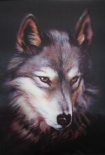 3D Lenticular Picture Red Wolf