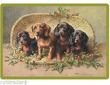 Dachshund Dogs In Basket  Refrigerator / Tool Box  Magnet Gift Card Insert