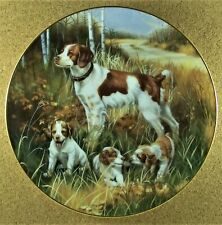 Brittany Spaniels Plate Classic Sporting Dogs Robert Christie Dog Puppies Fall