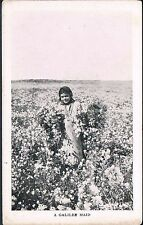 MISSIONARY FILM COMMITTEE Postcard A GALILEE MAID FIELD OF COTTON C1930'S