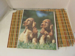 Vintage Mead 1980s Cocker Spaniel Dogs Trapper Keeper Notebook 3-Ring Binder