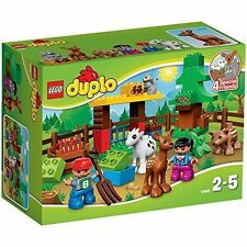 Duplo LEGO Bricks Pieces