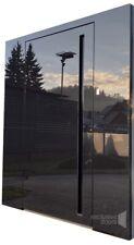 Glass Entrance door - black glass with hidden - PIVOT DOOR