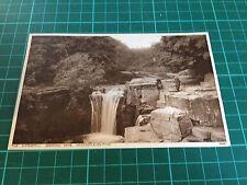 Old postcard of Jesmond Dean, Newcastle upon Tyne , Tyne & Wear (3869)