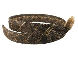 """1"""" Real Rattlesnake Hat Band with Rattle (598-HB199) C4H"""